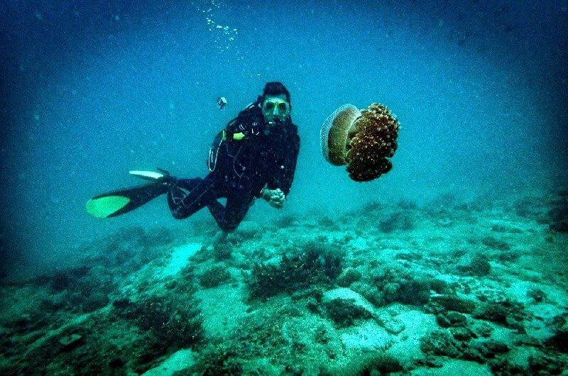 krabi snorkeling package